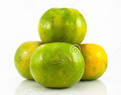 grupo-de-naranja-tropical-44882213
